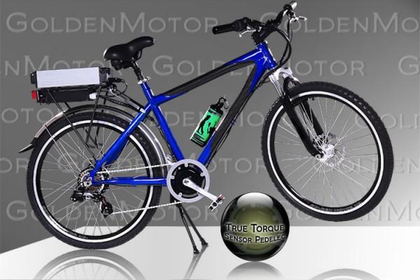 จักรยานไฟฟ้า Cruz-2009