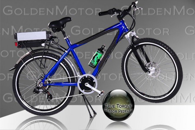 cruz-2009-electric-bike